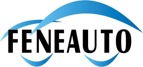 Federação Nacional das Autoescolas (Feneauto)