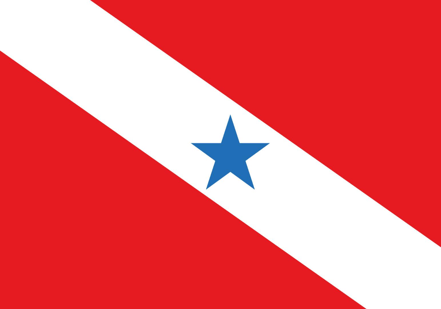 Sindicato dos C.F.C.s do Estado do Pará